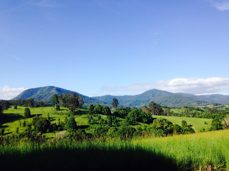 nimbin mountains