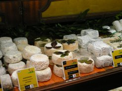 Just one small section of the cheese shop