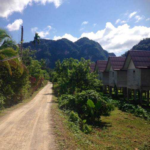 Driving into Khao Sok